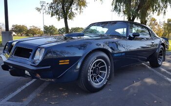 1974 Pontiac Trans Am for sale 100966709