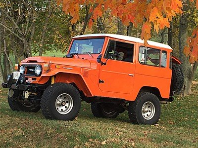 1974 Toyota Land Cruiser for sale 100971615