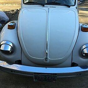 1974 Volkswagen Beetle for sale 100778133