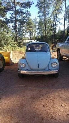 1974 Volkswagen Beetle for sale 100829797