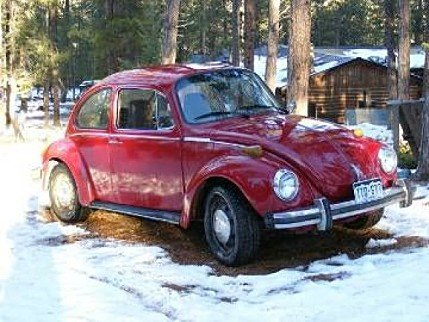 1974 Volkswagen Beetle for sale 100846308