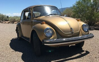 1974 Volkswagen Other Volkswagen Models for sale 100895431