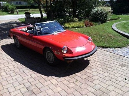 1975 Alfa Romeo Spider for sale 100830565