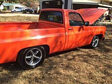 1975 Chevrolet C/K Truck for sale 100862695