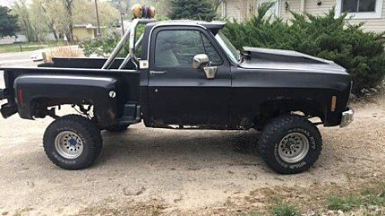 1975 Chevrolet C/K Truck for sale 100870977