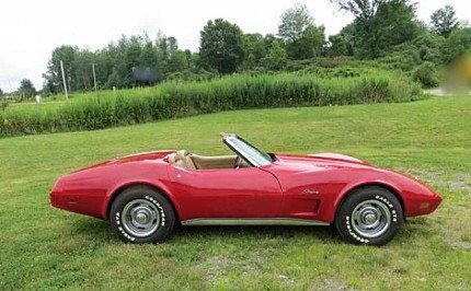 1975 Chevrolet Corvette for sale 100968850