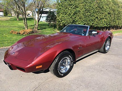 1975 Chevrolet Corvette for sale 100985309