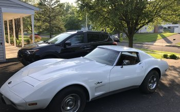 1975 Chevrolet Corvette Coupe for sale 101002959