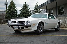 1975 Pontiac Firebird for sale 101004038