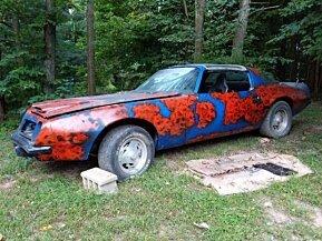 1975 Pontiac Firebird for sale 101043166