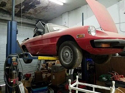 1976 Alfa Romeo Other Alfa Romeo Models for sale 100829543