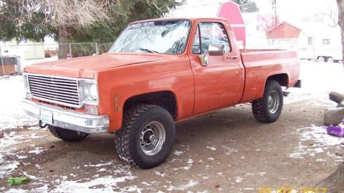 1976 Chevrolet C/K Truck for sale 100841362