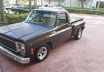1976 Chevrolet C/K Truck for sale 100881921