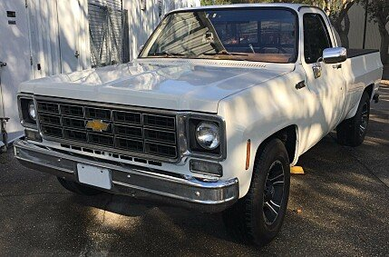 1976 Chevrolet C/K Truck for sale 101007002