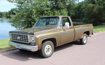 1976 Chevrolet C/K Truck 2WD Regular Cab 1500 for sale 101017390