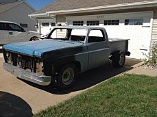 1976 Chevrolet C/K Truck for sale 100829668