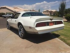 1976 Pontiac Firebird for sale 100829724