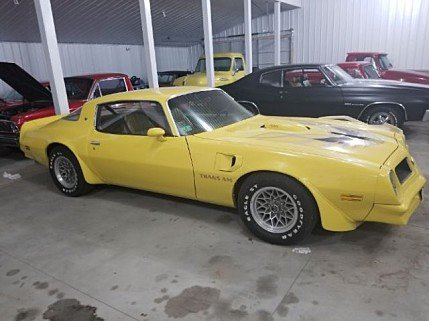 1976 Pontiac Firebird for sale 100947905