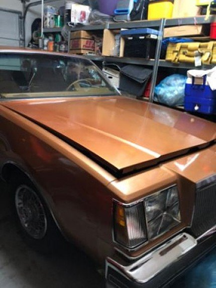 1977 Buick Regal for sale 100982175