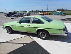 1977 Buick Skylark for sale 100748882