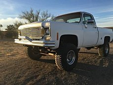 1977 Chevrolet C/K Truck for sale 100966293