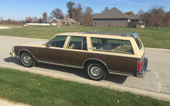 1977 Chevrolet Caprice Classic Wagon for sale 100822217