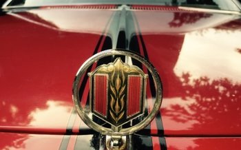 1977 Chevrolet Chevelle for sale 100781599