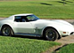 1977 Chevrolet Corvette for sale 100812343
