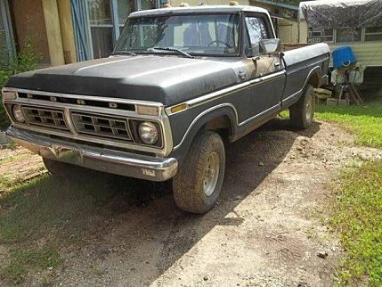 1977 Ford F150 for sale 100878202