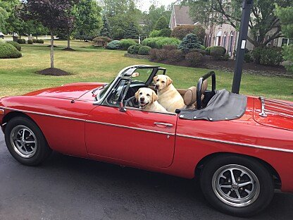 1977 MG MGB for sale 101032772