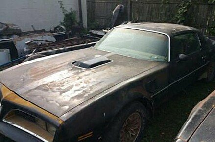 1977 Pontiac Firebird for sale 100974886