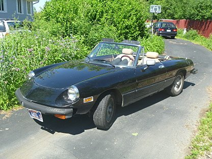 1978 Alfa Romeo Spider for sale 100772380