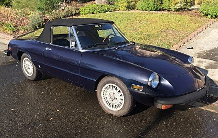 1978 Alfa Romeo Spider for sale 100813303