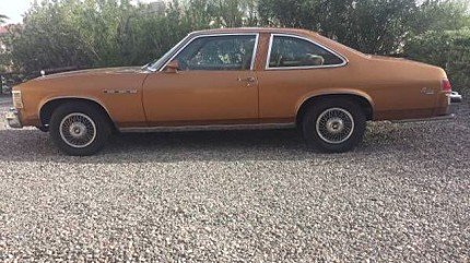 1978 Buick Skylark for sale 100829734