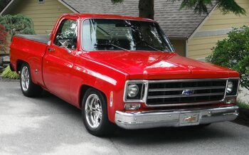 1978 Chevrolet C/K Truck for sale 101005098