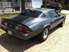 1978 Chevrolet Camaro for sale 100802503