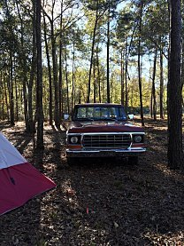 1978 Ford F150 2WD Regular Cab for sale 100987560