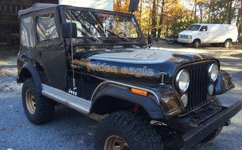 1978 Jeep Other Jeep Models for sale 100843294