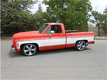 1978 chevrolet C/K Truck for sale 101004697