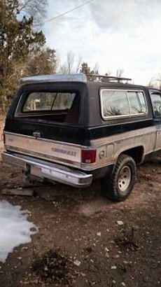 1979 Chevrolet Blazer for sale 100845510