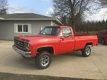 1979 Chevrolet C/K Truck for sale 100987130