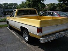 1979 Chevrolet C/K Truck for sale 100827063