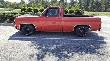 1979 Chevrolet C/K Truck for sale 100827465