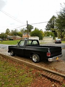 1979 Chevrolet C/K Truck for sale 100922553
