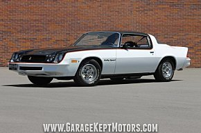 1979 Chevrolet Camaro for sale 100981149