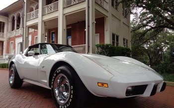 1979 Chevrolet Corvette Coupe for sale 101025286