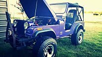 1979 Jeep CJ-5 for sale 101036428