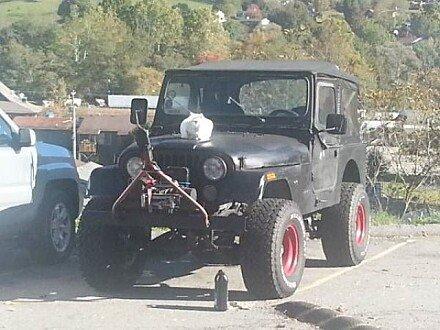 1979 Jeep CJ-7 for sale 100809375