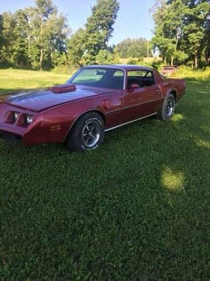 1979 Pontiac Firebird for sale 100905781