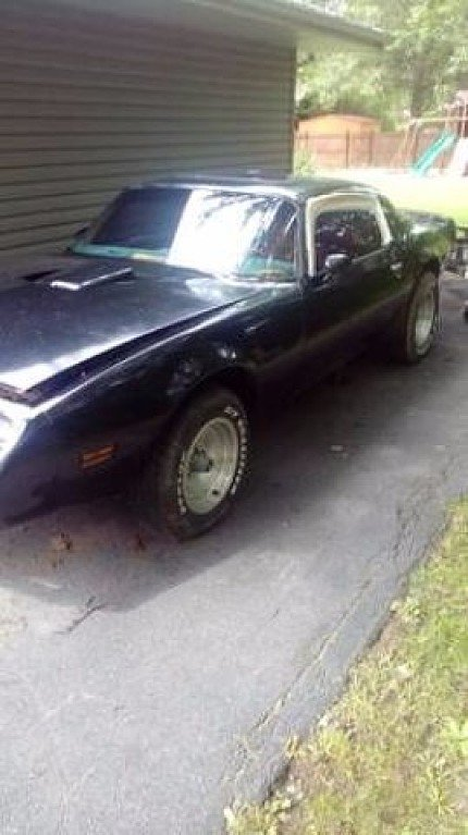 1979 Pontiac Firebird for sale 100905993